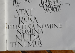 STAT ROSA NOMINE NOMINA NUDA TENEMUS - Sketchbook (Oriol Miró Genovart) Tags: sketch roman gothic rosa stat sketchbook calligraphy sketches nuda serif blackletter copperplate capitals oriol miró nomine pristina caligrafía gothics uncial neuland calligraphie ploma romanes kalligrafi nomina esbós cal·ligrafia gòtica anglesa tenemus