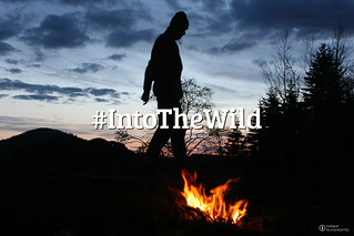 Flickr Friday: #IntoTheWild