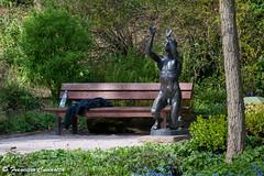 Naked Yoga in the Park (Francesco Cucinotta) Tags: park bw yoga germany naked deutschland akt stuttgart germania parkbank badenwrttemberg killesberg hhenpark stoccarda nakedyoga hhenparkkillesberg