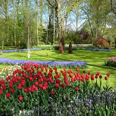 Jardin enchanteur **---+---° (Titole) Tags: keukenhof paysbas garden statues tulip tulipes jardin parc titole nicolefaton squareformat thenetherlands park friendlychallenges photoquestchallenge 15challengeswinner gamesweepwinner