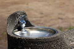 Water fountain (aaronvandorn) Tags: jerseycity track digitalcamera waterfountain lincolnpark rokkor135mmf28 manualprime sonynex6