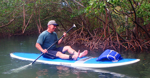 5-17-15 JackDee_Terry & Co Paddleboard Tour Sarasota  (10)