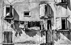 Rovinj (Suzie Maitland) Tags: windows blackandwhite building window monochrome architechture croatia clothes clothesline rovinj washing istria washingline niksilverefex