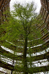 Naturerbe Zentrum Rgen 2 (Radoslaw Orecki) Tags: rugen