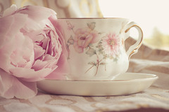 Peony & tea (WillemijnB) Tags: pink white cup tasse rose season gold spring soft tea pastel or peony wit blanc thee peonies roze goud th hightea kopje zacht pioenroos doux