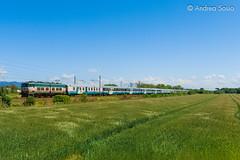 E.656.091 TI (Andrea Sosio) Tags: train italia pisa espresso toscana treno exp trenitalia 091 ferroviedellostato e656 caimano 14022 nikond60 madonnadellacqua andreasosio