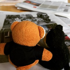 Samen krantje lezen! (Harry -[ The Travel ]- Marmot) Tags: bear beer square reading newspaper squareformat mokum ludwig krant lezen amsterdamnoord keukentafel beerin iphoneography instagramapp uploaded:by=instagram allrightsreservedcontactmebyflickrmail