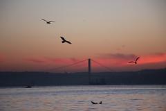 istanbul boaz (ercan_fb) Tags: sea sunrise canon istanbul boaz 18135 600d