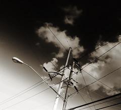 (Photosintheattic) Tags: sky blackandwhite bird monochrome lines birdie clouds streetlight power post outdoor streetlamp powerlines lamppost cables wires transformers poles telephonepole telephonepost