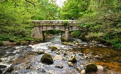 Shaugh Bridge, Dartmoor (Baz Richardson) Tags: bridges devon rivers dartmoor confluence shaughprior shaughbridge riverplym