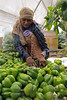 Female Laborer Sorting Peppers in a Polyhouse (IFPRI) Tags: india plant season pepper village farm farming grow health crop produce agriculture yield cultivation sustainable pulses nutrition southasia manoli haryana sonipat foodsecurity polyhouse agriculturaldevelopment micronutrients ifpri