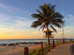 Rainbow Bay evening (Deb Jones1) Tags: ocean sunset beach mobile sunrise palms surf phone australia surfing palm palmtree queensland beaches goldcoast rainbowbay