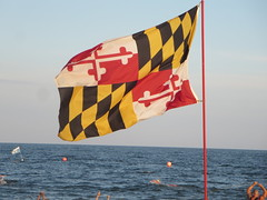 The flag of the State of Maryland flying at the Atlantic Ocean beach in Ocean City, Maryland, USA (RYANISLAND) Tags: summer beach md maryland beaches summertime oceancity oc atlanticocean worcester ocmd oceancitymaryland beachtown worcestercounty atlanticoceanbeach resorttown midatlanticregion townofoceancity