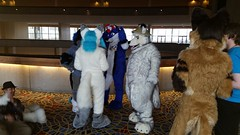 Dream Machine Photoshoot FWA 2015 - Shots by Lykanos (1) (Lykanos) Tags: furry photoshoot dreammachine fwa fwa2015 dmcostumes
