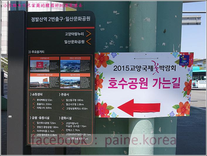 高陽國際花卉博覽 (1).JPG