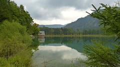 Offensee / Salzkammergut (Erich Hochstöger) Tags: lake green nature water landscape austria see österreich wasser natur panasonic grün landschaft salzkammergut offensee fz150