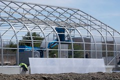 Panels going up on Greenhouse (ed dittenhoefer photo) Tags: coltivare farmtobistro tc3barn