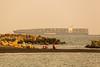 大船入港 (Yi-Liang Lai) Tags: family sea children boat ship families taiwan evergreen kaohsiung 台灣 高雄 70300mm 旗津 6d 船 70300 暮色 沙灘 黃昏 llens 高雄港 傍晚 港口 貨輪 胖白