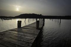 Sun haze bridge (pelindquist) Tags: bridge sea sun sol water haze nikon vatten hav brygga nikond750 afsnikkor20mm118ged