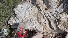 2015-04-02 09.39.00.jpg (DrPKHouse) Tags: arizona unitedstates loco tufa fieldphoto bouse cibola fieldproject mapunit
