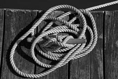 Dockside (thetrick113) Tags: wood river dock board rope line hudsonriver tied tight cleat hudsonrivervalley hudsonvalley beaconnewyork dutchesscountynewyork sonyslta65v
