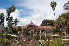 IMG_9656.jpg (AngieSix) Tags: california travel balboapark lilypond botanicalbuilding