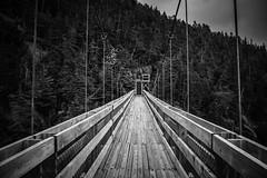 20160416-_DSC3572 (limeo1985) Tags: bridge blackandwhite sony stjohns contax le marche 2528 carlzeiss newfoudland