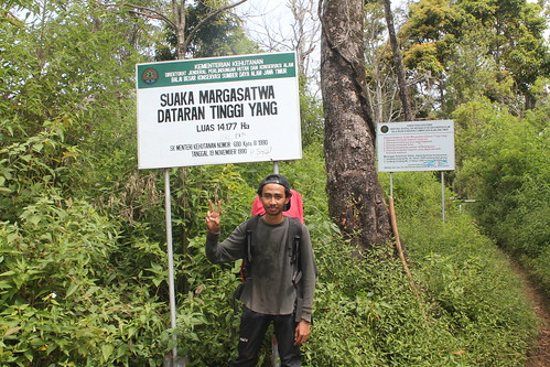"Pendakian Sakuntala Gunung Argopuro Juni 2014 • <a style=""font-size:0.8em;"" href=""http://www.flickr.com/photos/24767572@N00/27162071235/"" target=""_blank"">View on Flickr</a>"