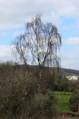 Calver 051 (Slimboy Fat) Tags: derwentvalley calver derbyshire england uk