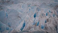 Ice 1 (ckocur) Tags: patagonia ice southamerica argentina nationalpark glacier peritomoreno elcalafate icefield southernpatagonia