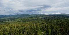 Bayerischer Wald HDR (WeatherMaker) Tags: mountain mountains germany bayern bavaria bayerischerwald