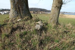 185 Haithabu Wall WHH 26-03-2016 (Kai-Erik) Tags: archaeology wall museum germany geotagged deutschland stadt ostern markt vikings viking tyskland steinmetz weber oldenburg schleswigholstein bcker schneider goldschmiede huser wikinger siedlung wmh archologie vikinger stadtwall wikingermarkt osterwochenende haithabu arkeologi slesvigholsten tpfer danewerk vikingr haddebyernoor arkologi hedeby whh slesvigland wikingerzeit heddeby danevirke heiabr heithabyr heidiba vikingrkontor httpwwwhaithabutagebuchde spielzeugmacher bogenbauer bernsteinschleifer geweihschnitzer glasperlenmacher handelsmetropole httpwwwschlossgottorfdehaithabu danwirchi vikingehuse vikingetidshusene bronzegieser frhmittelalterlichestadt 26032016 26thmarch2016 03262016 museumsfreiflche 6frhjahrsmarkt 300handwerkerundhndler 26mrz2016 geo:lat=5448977117 geo:lon=956735004