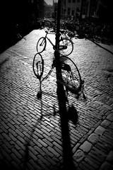 Summer Evening in the Hague (Biały) Tags: shadow holland bike bicycle nederland thenetherlands bicicleta sombra denhaag hague plein thehague fahrrad haga fiets rower cień zuidholland lahaya 2016 kolo voorhout paisesbajos holandia sgravenhage niderlandy nizozemsko