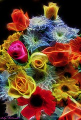Colours (Billy McDonald) Tags: flowers colours glasgow fractalius