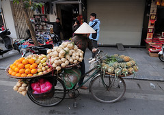 Life of Vietnamese vendors in Saigon (phuong.sg@gmail.com) Tags: life street city morning food woman flower building heritage classic fruits hat bike bicycle yellow speed vintage walking asian town ancient asia vietnamese basket slow market antique traditional crowd poor culture lifestyle fresh bamboo retro vietnam business sidewalk tropical delivery vendor balance tradition hanoi heavy porter saigon weight tranquil carry
