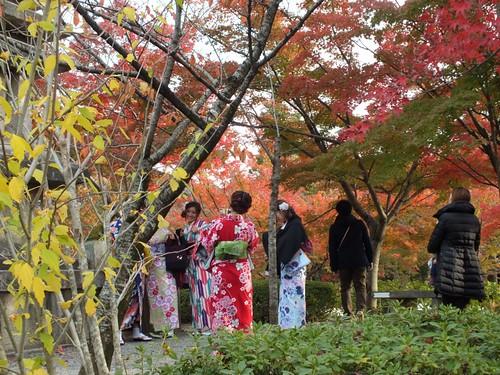 Thumbnail from Kiyomizu-dera