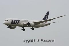 SP-LRD LMML 18-04-2015 (Burmarrad (Mark) Camenzuli) Tags: cn aircraft lot polish airline boeing airlines registration dreamliner 7878 35941 lmml splrd 18042015