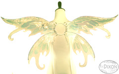 Iynx No.5 Medium Fairy Wings (RSDixonArt) Tags: halloween glitter butterfly costume wings cosplay magic fairy fantasy masquerade wearableart cellophane fairywings