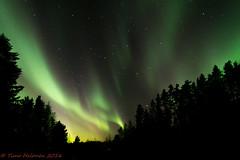 The Aurora (Timo Halonen) Tags: sky night finland nikon borealis dx y taivas laihia revontulet ostrobothnia etelpohjanmaa d5200 isokyl