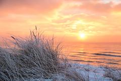 Frosty sunrise (Infomastern) Tags: winter cold vinter frost rime rimfrost kallt skateholm