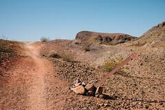 5R6K2867 (ATeshima) Tags: arizona nature havasu