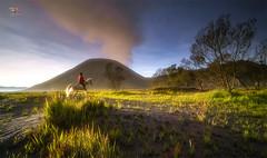 I dream of Bromo (Jose Hamra Images) Tags: sunset sunrise landscape surabaya bromo probolinggo bromotengger
