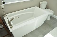 Master Bath tub 15