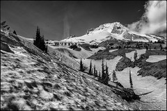 Snow-Covered Slopes (greenschist) Tags: trees usa snow clouds oregon volcano blackwhite mthood