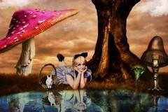 Wonderland (Swissrock) Tags: reflection tree mushroom water june photoshop alice digitalart fantasy photoart challenge lightroom digitalpaint 2016 photomatix