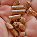 Wood pellets used for smoking.
