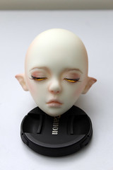 Gone: Impldoll Ziv (Damasquerade) Tags: bjd balljointdoll impldoll ziv faceup ws