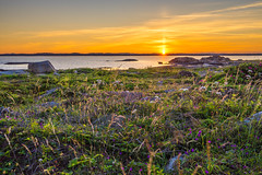 Sun of Gold (anbjornhansen) Tags: moutmarka tjme vestfold norway sony sonya7r 1635mm 115sec iso100 f20 35mm nature