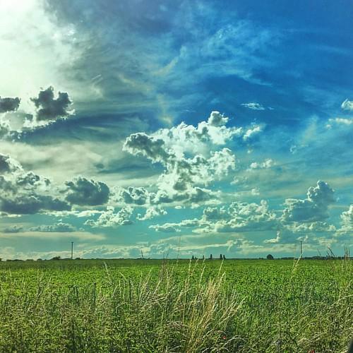Another beautiful day in the Czech Republic. #czechia #czech #czechrepublic #skies #slibovice #sunny #fields #nobody #countryside