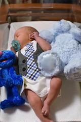 Getting Crowded (donna_0622) Tags: baby blue teddy bear grover sesamestreet nikon d750